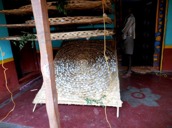 pix7 105 silkworm mat lowered to show cocoons